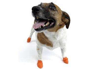 Ботушки за кучета