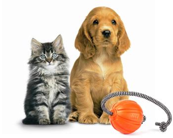 Играчки за животни