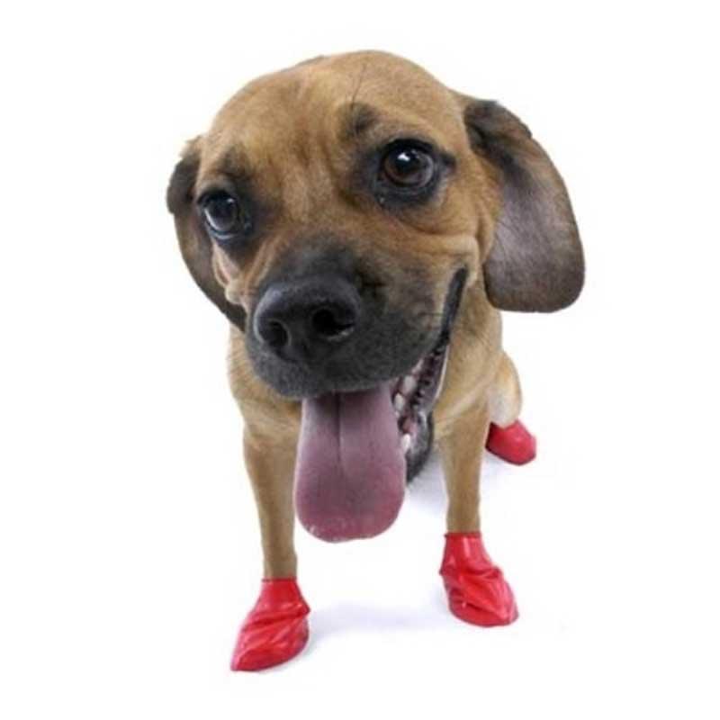 Pawz Small Red - каучукова водоустойчива обувка за кучета с дължина на лапата до 6см 1бр