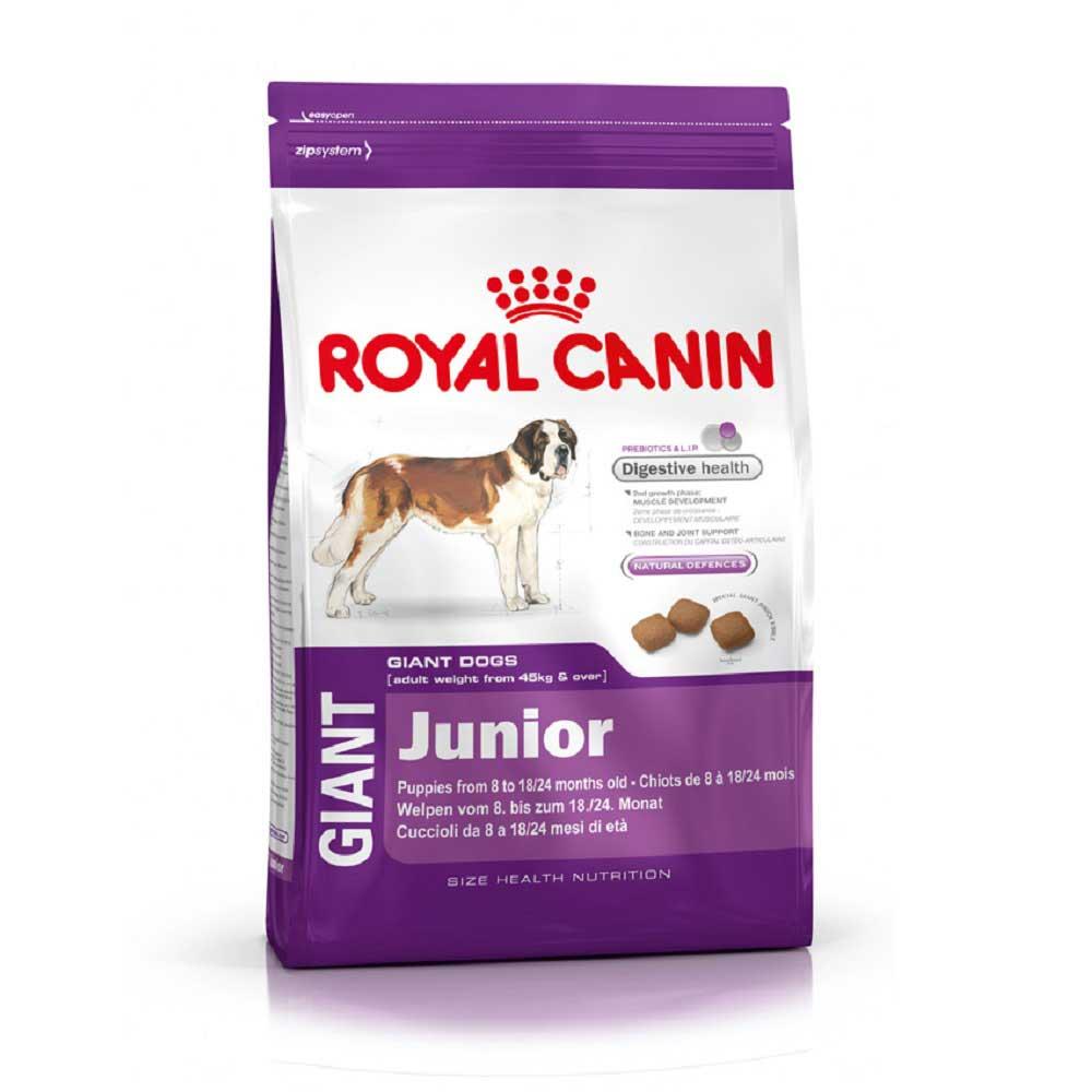 Royal Canin Giant Junior - за подрастващи кучета от гигантските породи